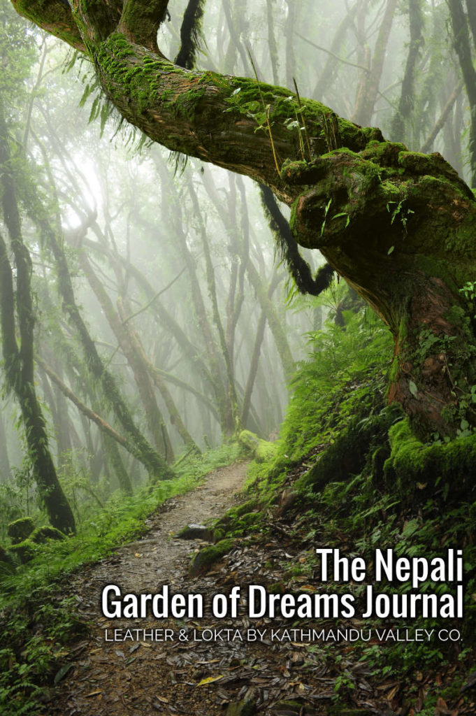 Path in Nepal Jungle